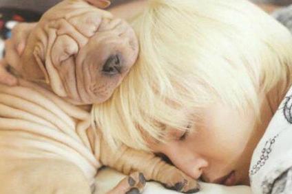 14 K-Pop İdolü ve Onların Sevimli Hayvanları